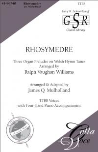 Rhosymedre | 41-96740